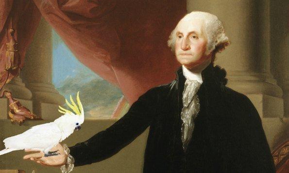 The Best List of Presidential Pet Birds