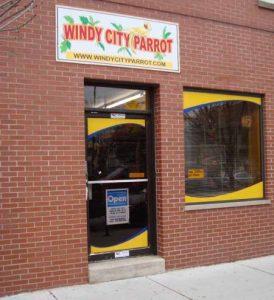Windy city parrot birdie boutique store hours