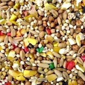 Higgins Vita Seed Dove Specific with ProBiotics 25 lb (11.34 Kg)