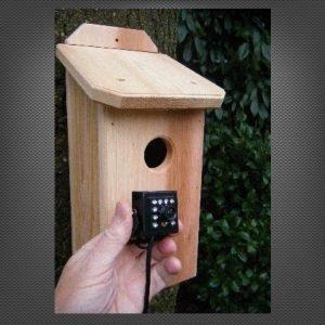 Backyard Birdhouse Owl Night Vision Wireless HD Camera & Cedar Nestbox