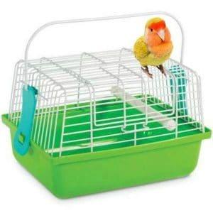 Cutest Little Bird Carrier Ever by Prevue 1304 9×7 Green