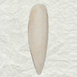 Cuttlebones A Natural Calcium Source for Birds Medium 1/4 lb (113.4 g)