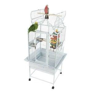Elegant Top Bird Cage for Smaller Parrots by AE GC6-2422 Platinum
