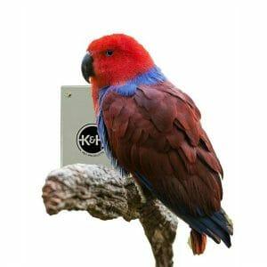 Bird Warming Heated Snuggle Up Panel for Medium to Large Birds