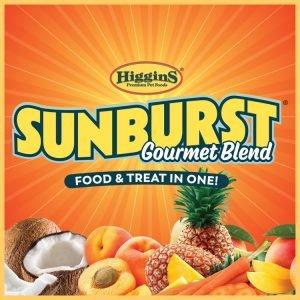 Higgins Sunburst
