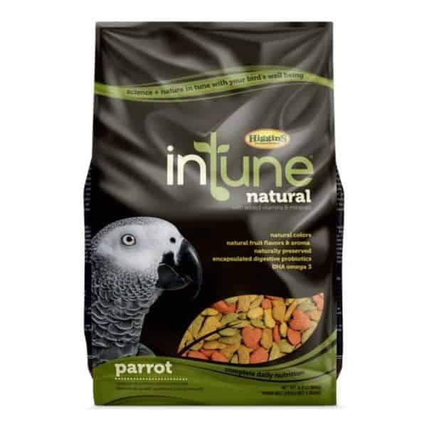 Intune parrot 2