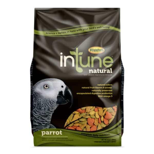 Intune parrot 3
