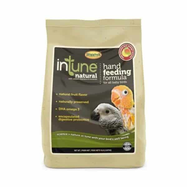 Intune regular hand feeding 2