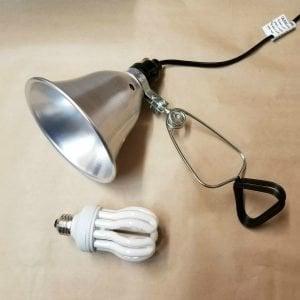 Full Spectrum Economy Daylight Bulb with Clamp Light Lamp