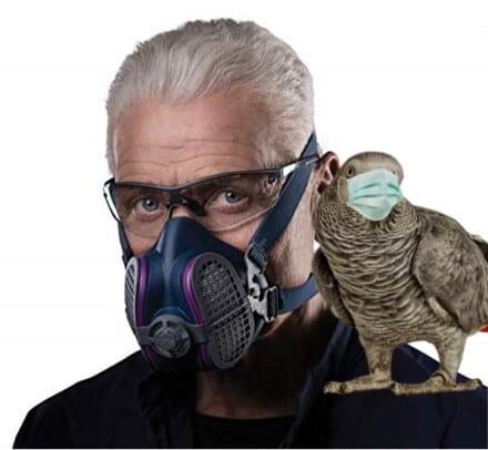 Is My Pet Bird Triggering My Bronchitis?