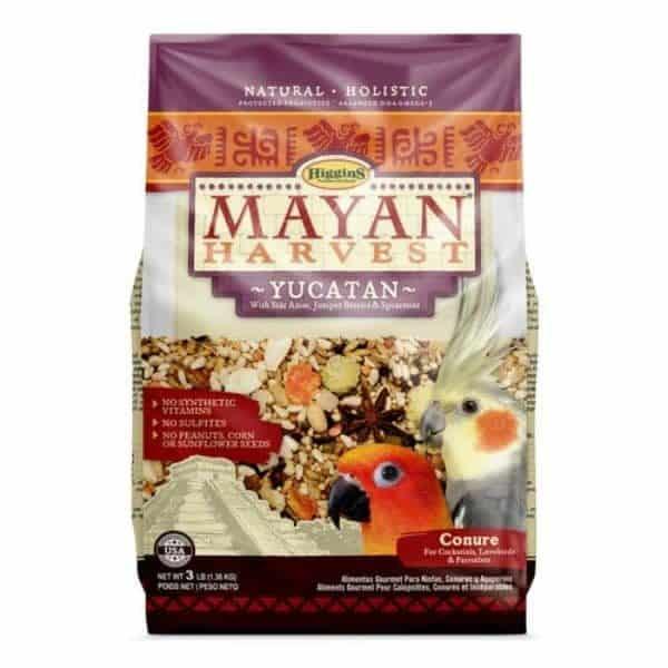 Mayan yucatan 4