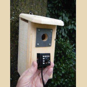 Backyard Birdhouse Owl Night Vision HD Camera In White Pine Nestbox