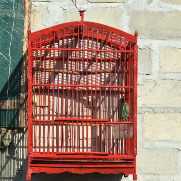 Should i use fda approved powder coating on my older birdcage?